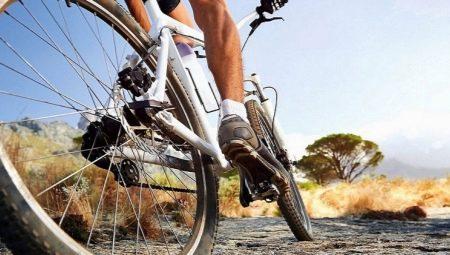 Діаметр коліс велосипеда по зростанню: таблиця розмірів. Як вибрати радіус велосипедного колеса для дорослої людини?