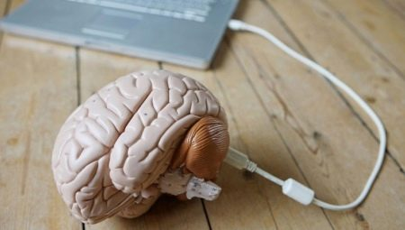 Довільна пам'ять: що це таке? В якому віці починає формуватися? Способи розвитку пам'яті у молодших школярів та дорослих