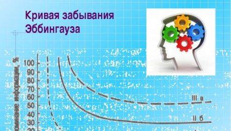 «Крива забування» Еббінгаузом: опис закону Германа Еббінгаузом і методики повторення. Як крива відображає процес забування інформації?