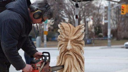Різьба по дереву бензопилою: дерев'яні скульптури для початківців. Як поетапно вирізати пилкою ведмедя і інші великі скульптури, білочку і гриб?